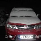 Roter im Schnee
